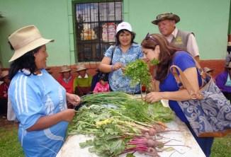 Vicepresidenta Regional Dra. Mónica Sánchez Minchola participó durante primera cosecha de productos en el Caserío el Rosal y felicitó el emprendimiento de las madres participantes en el proyecto, acción que enaltece a la mujer andina como gestora del desarrollo comunal de la región.